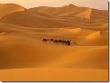 Путешествуем по пустыне Сахара