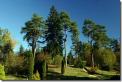 парк Шпаковского