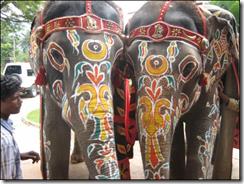 Удивительное путешествие в Индию