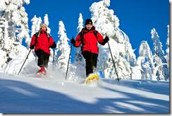 горнолыжные курорты