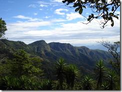Леса Сальвадора