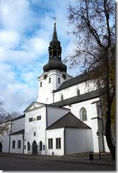 Домский собор Таллинн.
