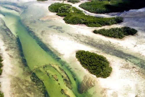 Острова Занзибар
