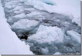 морские льды