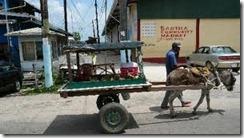 Страна Гайана