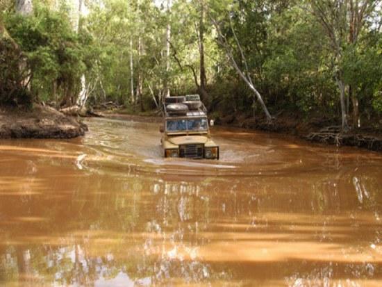 экскурсии по тропическим джунглям на вездеходах