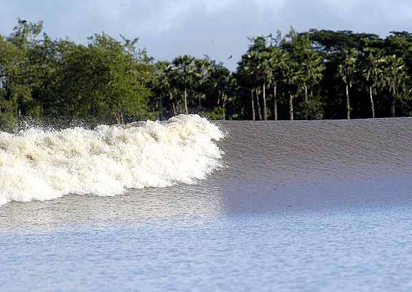 самая крумная волна в мире Поророка