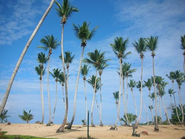 дикие пляжи